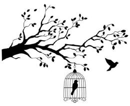 uccello-in-gabbia